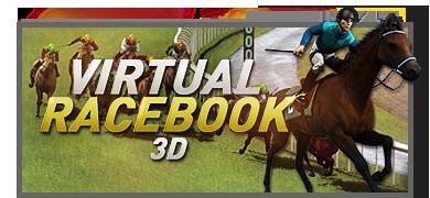 virtualracebook.png